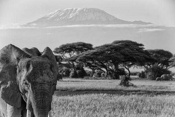 Afrika5